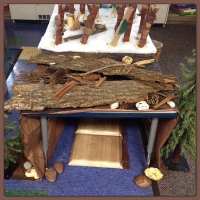 """Creating habitats after studying 'Animals in Winter' ("""",)"""