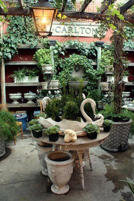 I Adore Outsides Magnolia Garden Store Via The Creeping Fig