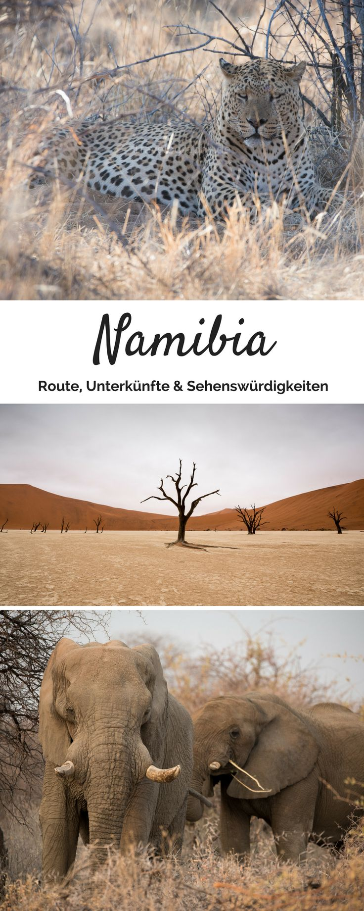 Unsere Namibia Rundreise: Einstieg in das südliche Afrika