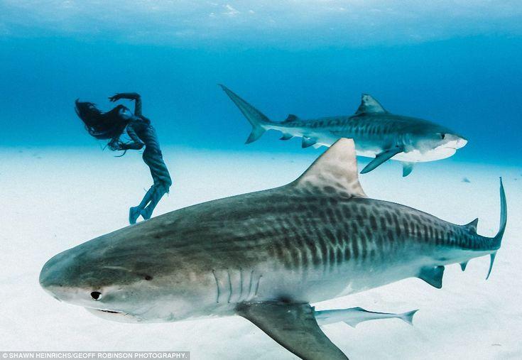 Ханна должна была находиться в постоянном движении — тогда акулы не станут ее атаковать. Чтобы акулы не приняли ее и съемочную группу за рыбу, все были одеты в темные костюмы, а у Ханны все тело дополнительно было разукрашено специальной темной краской.