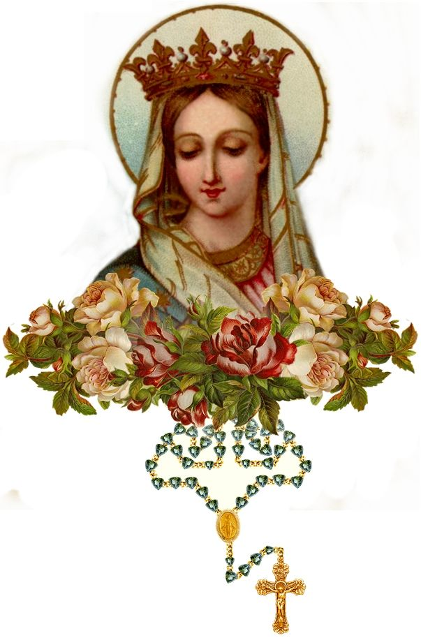 Queen Of The Rosary Picture