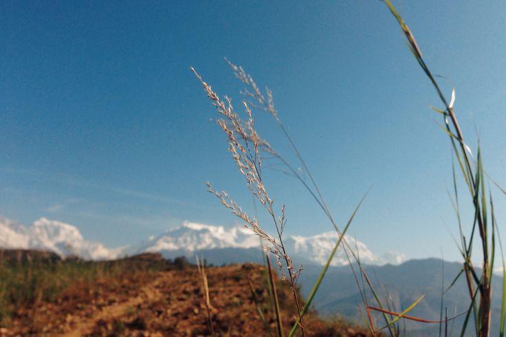 Himalaya//हिमालय  by Iphone 5