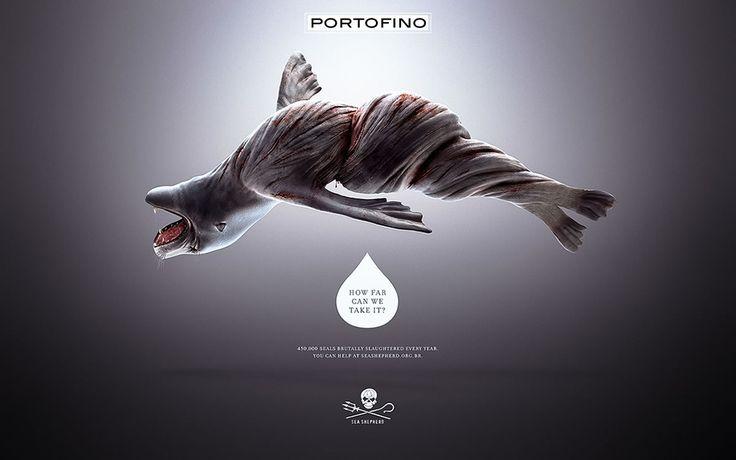 portofino-sea-shepherd-6