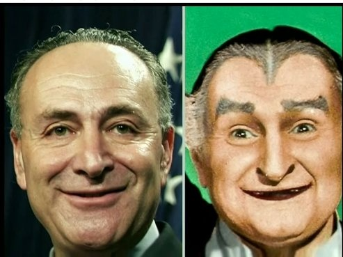 Image result for chuck schumer as a fool images