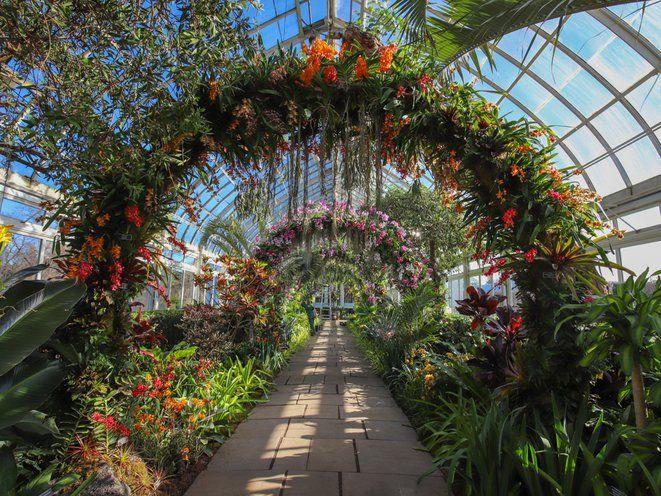 a99ef102a9b1d0491ab517ff6a435cdb - Florida Botanical Garden Florida Botanical Gardens December 5
