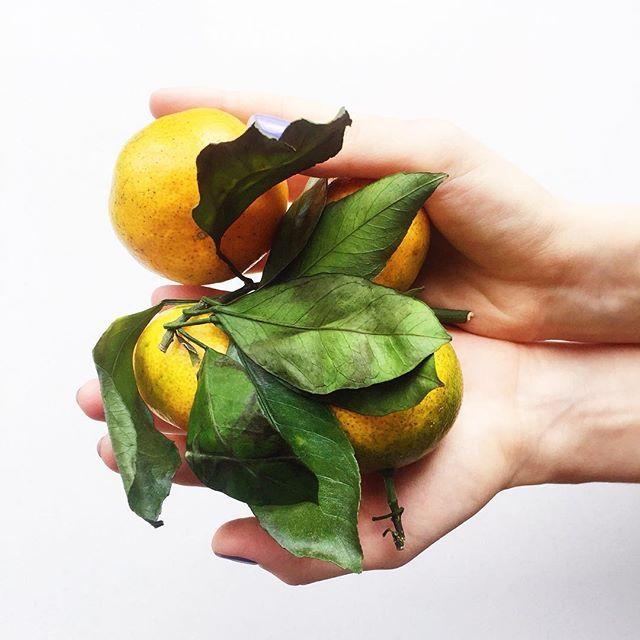 Lovely mandarins ✨