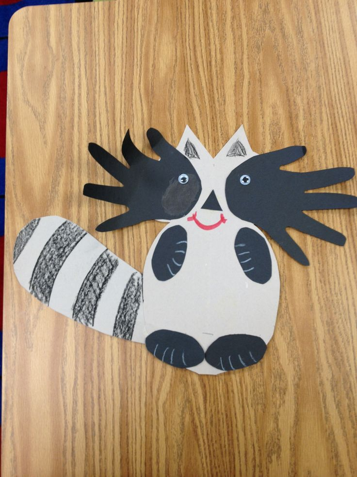 Raccoon nocturnal animals bulletin board classroom arts for Animals art and craft for preschoolers