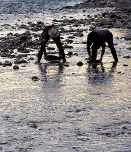 Campionato mondiale dei cercatori d'oro 2013  Si è svolto dal 19 al 25 agosto il trentasettesimo campionato mondiale dei cercatori doro, non più a Zubiena ma a Mongrando, in provincia di Biella.  http://www.orochange.it/news.asp