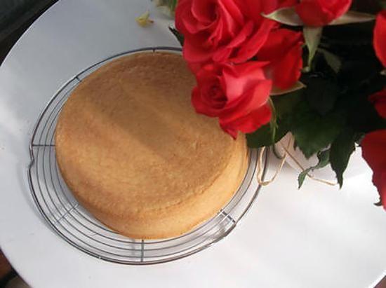 La meilleure recette de Génoise super rapide et moelleuse !!!!!! L'essayer, c'est l'adopter! 4.6/5 (11 votes), 29 Commentaires. Ingrédients: 4 oeufs, 200gr de sucre, 1 pincée de sel,200gr de farine, 1 sachet de sucre vanillé, 1 sachet de levure