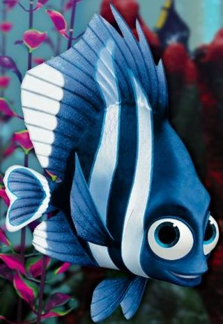 17 best ideas about finding nemo fish tank on pinterest for Mail order fish