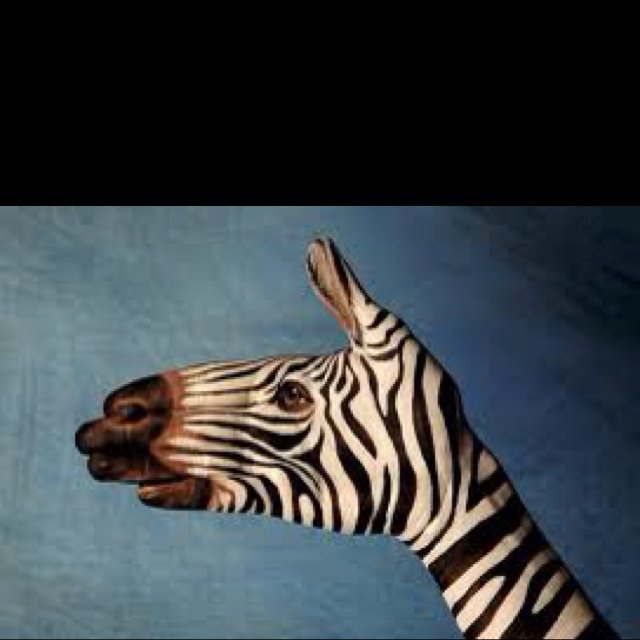 HahaOptical Illusions, Painting Art, Body Painting, Body Art, Paintingart, Hands Puppets, Animal, Zebras, Hands Art