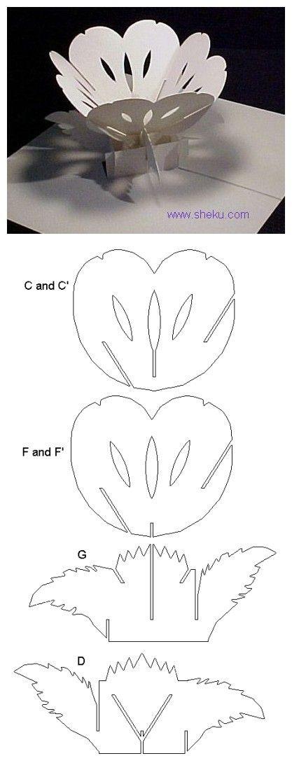 蝴蝶兰 Kirigami - lotus flower