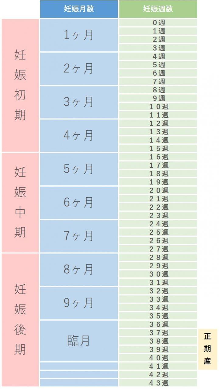 数え 方 周期 妊娠