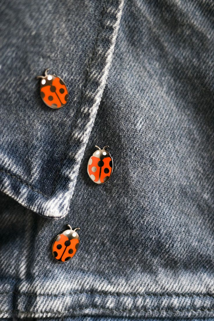 Image of Ladybug Pin