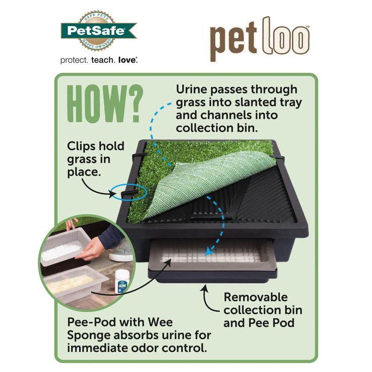 The Pet Loo is your backyard in a box. This portable indoor/outdoor toilet works for dogs, cats and small pets. Ideal for apartments, potty training and occasions when you can't let your pet out, the Pet Loo is a convenient alternative to pee pads and midnight bathroom breaks.