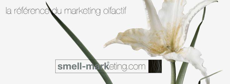 Marketing olfactif