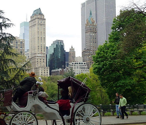New York City, New York: How amazing that the city planners set aside this large park for the people! I want to go back to take a carriage ride!!