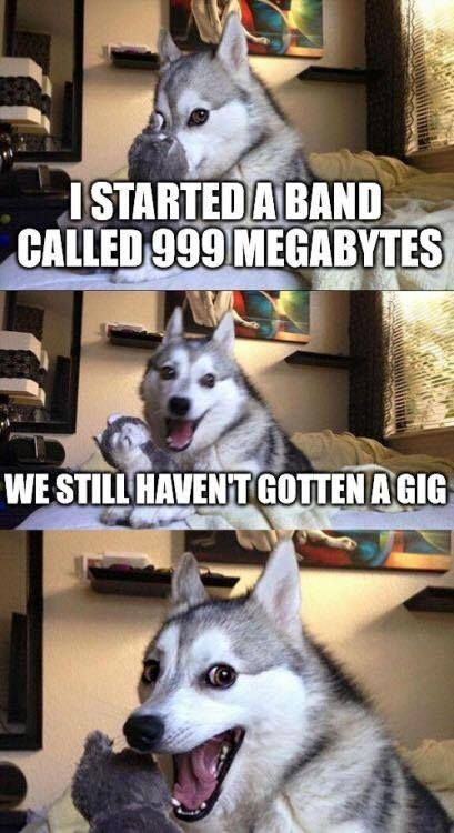 cool I started a band called 999 megabytes,we still haven't gotten a gig,dog,technical, meme  - Memepile by http://dezdemonhumoraddiction.space/engineering-humor/i-started-a-band-called-999-megabyteswe-still-havent-gotten-a-gigdogtechnical-meme-memepile/