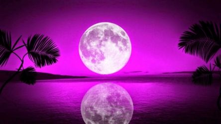Full Moon in Scorpio April 22nd, 2016 ~ The Full Pink Moon