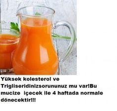 Yüksek kolesterol ve trigliserid düzenleyen içecek