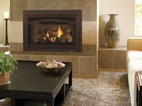 Gas Insert From Heat Glo Trinity Fireplace Inserts