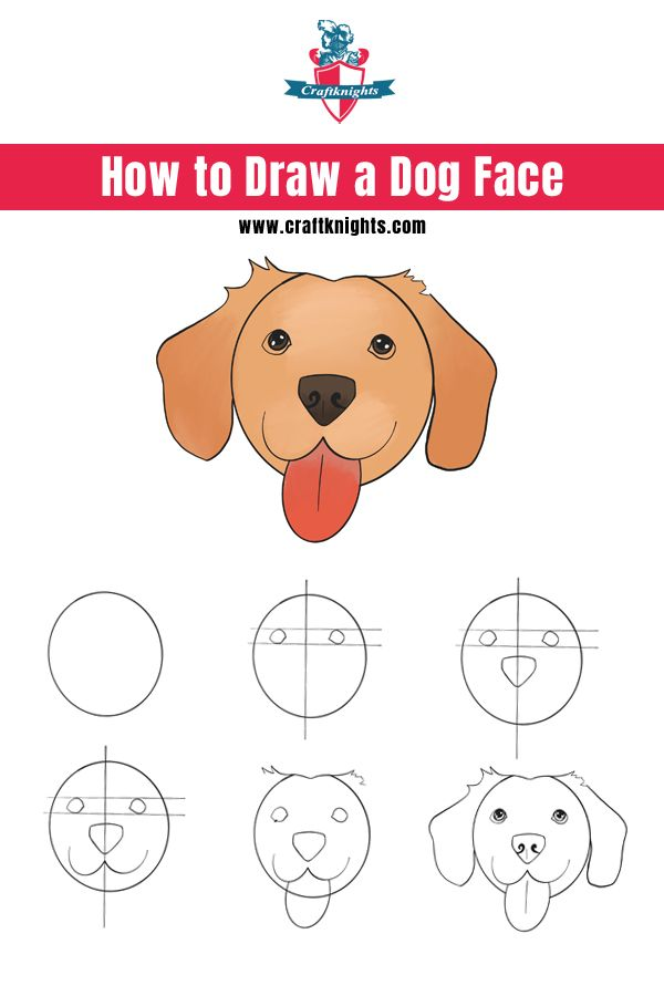 How To Draw A Puppy Face : puppy, Guide, Drawing, Simple,, Face,