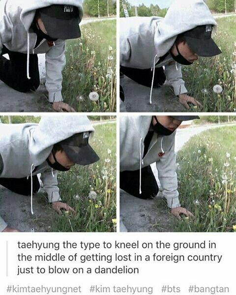 meme, bts, and taehyung 이미지