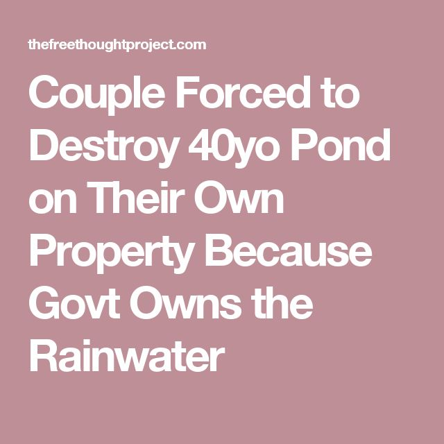 Couple Forced to Destroy 40yo Pond on Their Own Property Because Govt Owns the Rainwater