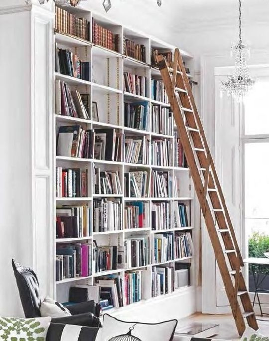 We dream of having bookshelves that require a library ladder.