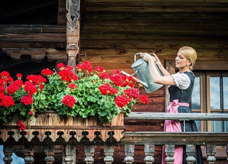 Das Blumendorf - Hundefreundliche Wanderwege in Söll, Tirol, Österreich (c) TVB Wilder Kaiser  Hundemeile in Söll vorstellen. Die Meile führt entlang eines kühl vor sich hin sprudelnden Gebirgsbaches, worin sich Ihr Hund erfrischen kann, abseits von Wiesen und Äcker. Außerdem lässt er sich durch die Nähe auch wunderbar an die Wanderung anschließen. Es gibt dort noch einen öffentlichen Hundespielplatz und einen Auslaufplatz, wo sich Ihr Vierbeiner noch mal richtig austoben kann.