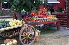 markets + prince edward county -