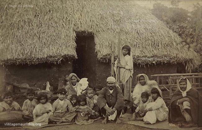 Indian Family Indentured Labourers Vacoas Mauritius ...