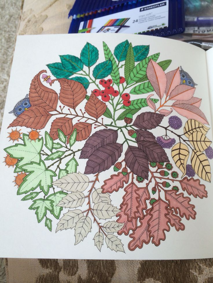 My first colouring in my new book a gift from my daughter Sam