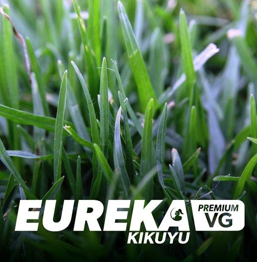 Eureka Premium VG Kikuyu | Lilydale Instant Turf | Love your lawn | Great grass | Lily & Dale | Follow us | Garden Tips & Advice | Contact us | Lawn Solutions Australia