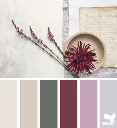 color compose | design seeds | Bloglovin: