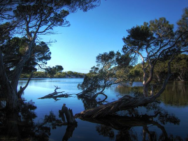 Kangaroo Island is Australia's third biggest Island.#amusement