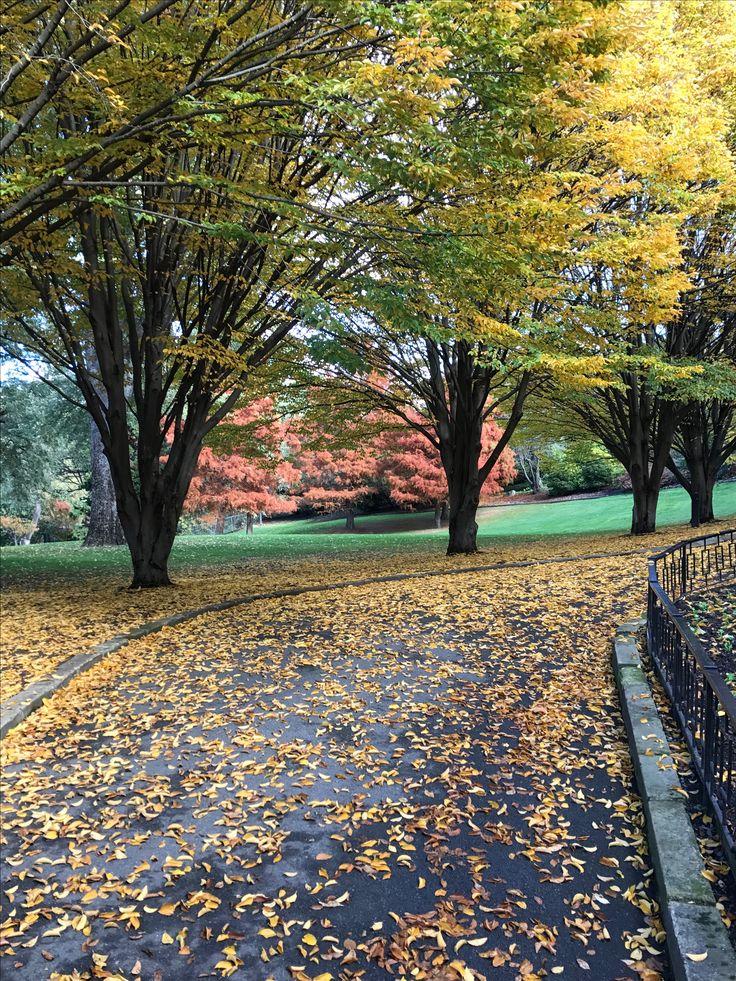 Autumn Fitzroy Gardens