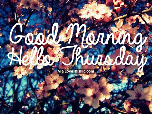 Good Morning, Hello Thursday good morning thursday quotes happy thursday good morning thursday quotes hello thursday good morning quotes for facebook morning quotes to start the day good morning image quotes best good morning thursday quotes thursday morning quotes
