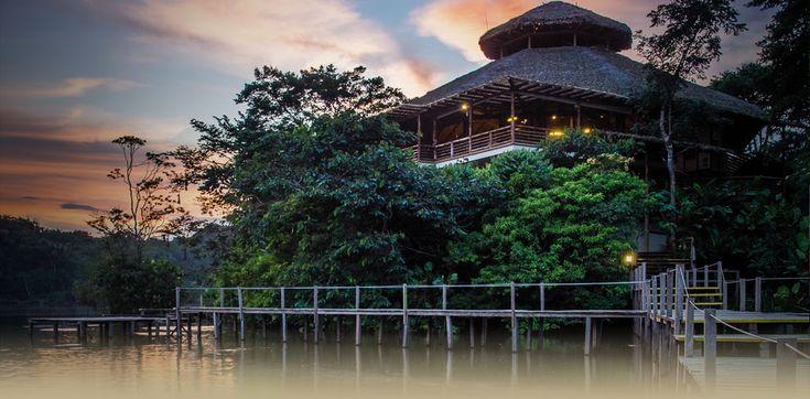 La Selva Amazon Eco Lodge - Ecuador Amazon Tour