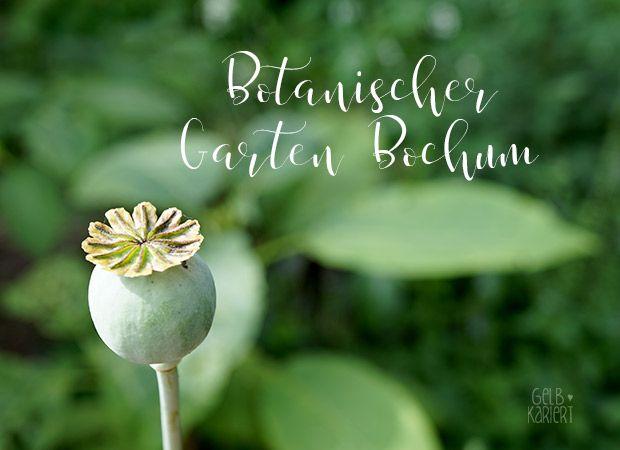 Botanischer Garten Bochum Ein Lieblingsausflugsziel Gelbkariert Botanischer Garten Bochum Botanischer Garten Garten