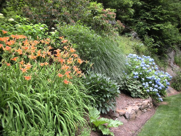 How to attractively plant a steep slope to reduce erosion.
