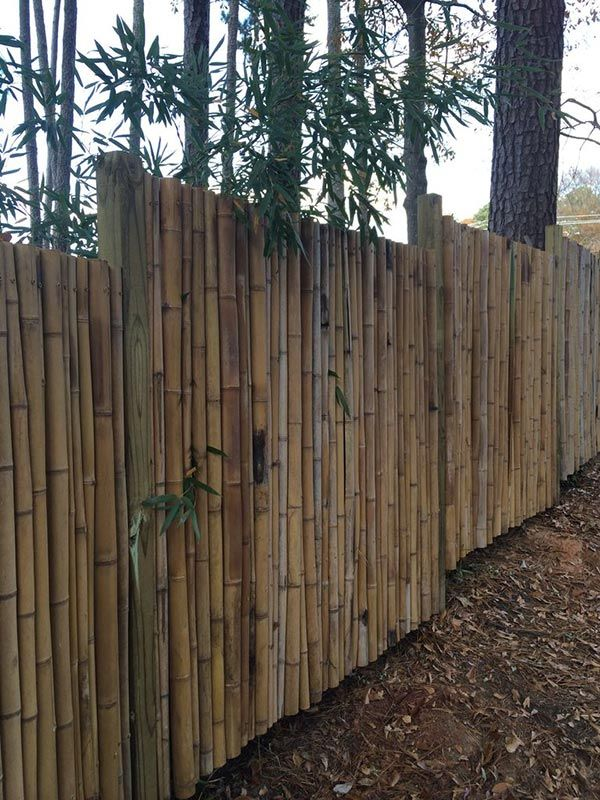 17 Best Ideas About Bamboo Fencing On Pinterest
