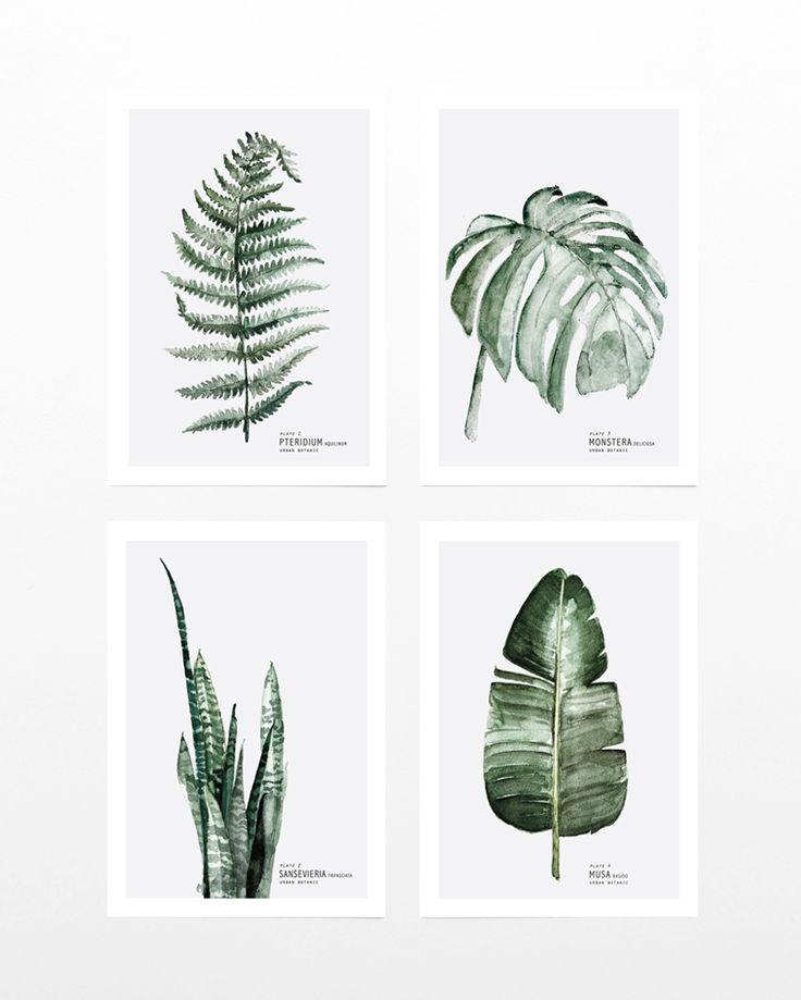 Urban Botanic Postcard A5 for sale at Buiten de Lijntjes http://www.buitendelijntjesshop.com/c-2800542/my-deer/