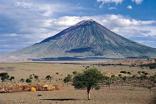 Lake Natron animals   Gustav Lindqvist goes to Africa: National Parks in Tanzania