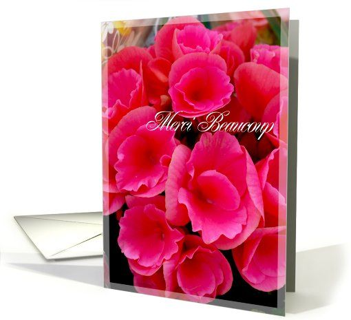 #thankyou #french card (290084) sold to customer in Massachusetts, United States #merci beaucoup