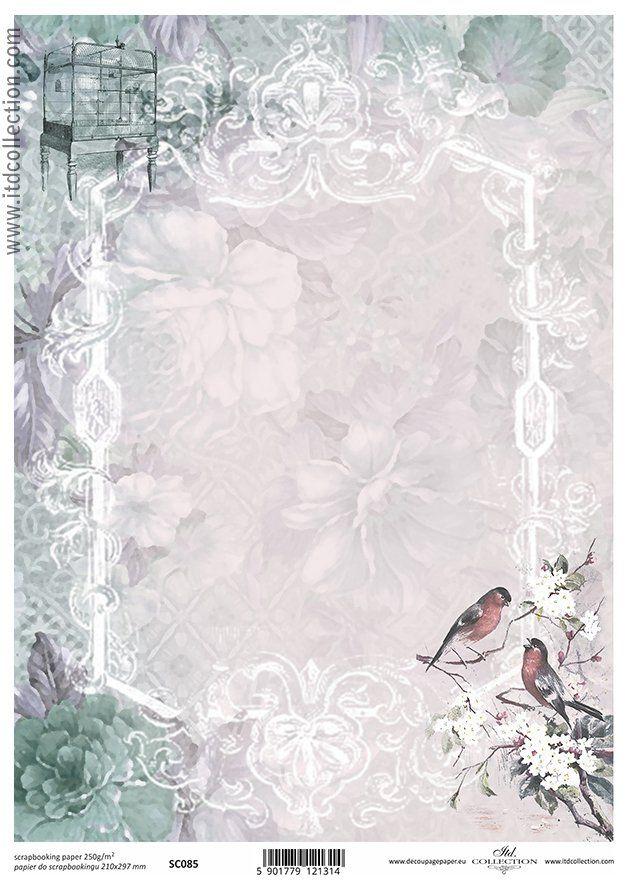 http://sklepik.na-strychu.pl/pl/p/Papier-A4-SC-085-Itd-Collection-ramka,-ptaki,-kwiaty/33709