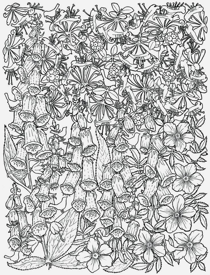Afbeeldingsresultaat voor kleurplaten voor volwassenen bloemen