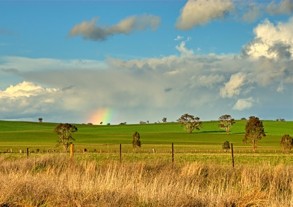 Cootamundra NSW Australia