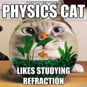 34 best physics memes images on pinterest funny stuff