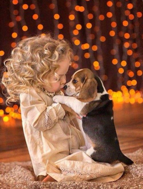 This Reminds Me Of When I Was A Child, Loving My Grandfather's Beagles. VICKIE
